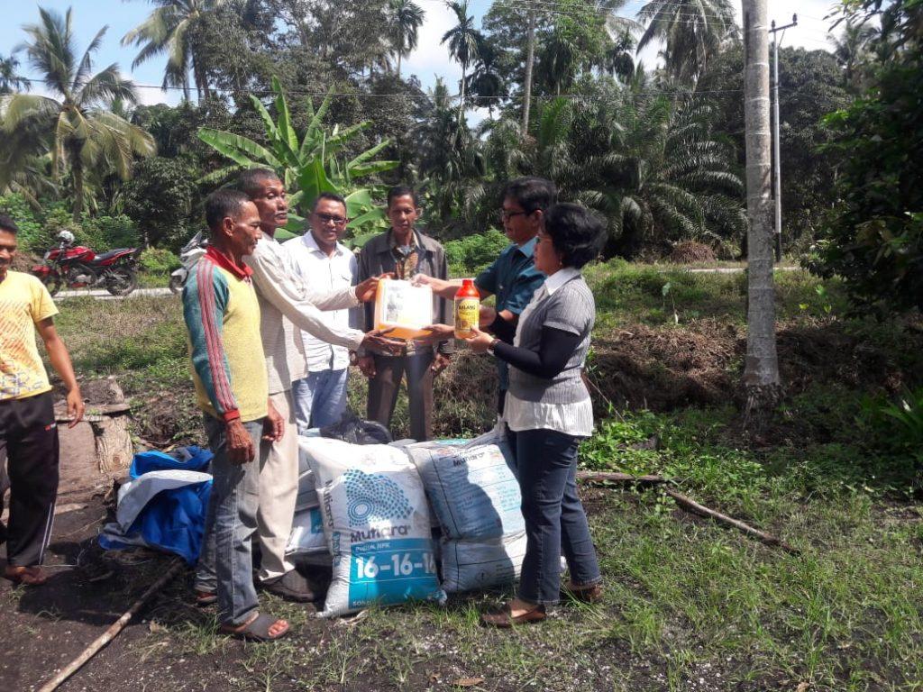 Dinas Perkebunan Meranti Salurkan Bantuan Bibit Kopi Liberika Dari Balai Besar Perbenihan Medan, Tingkatkan Produksi Kopi Masyarakat