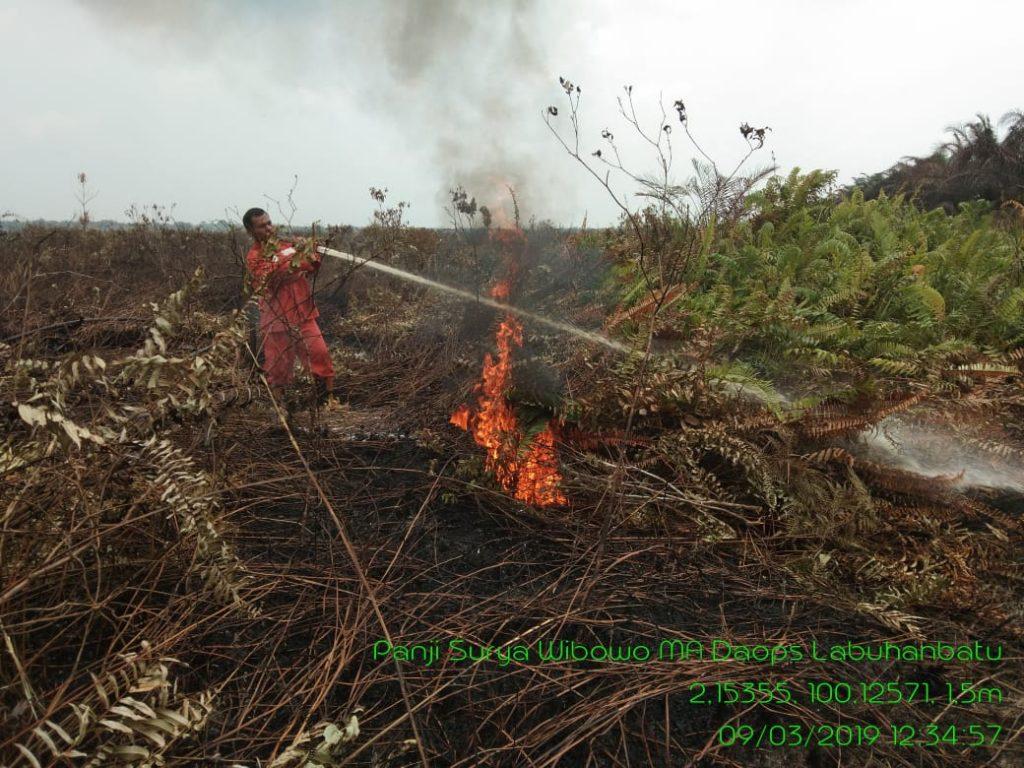 Jelang Musim Kemarau, Manggala Agni Labuhanbatu Siap Siaga Atasi Kebakaran Hutan dan Lahan