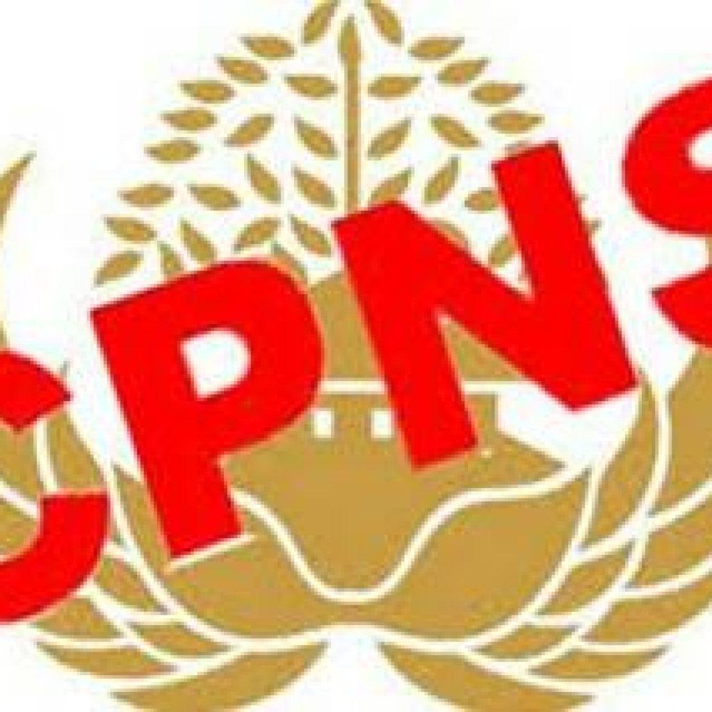 BKN Akan Umumkan 254 Ribu Rekrutmen Pegawai ASN