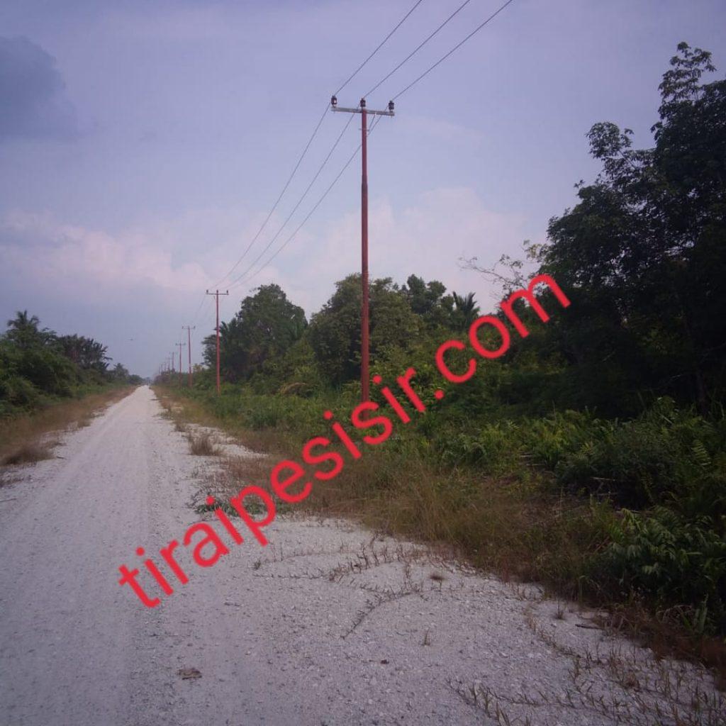 General Manager PLN Wilayah Riau,M.Irwansyah Putra Katakan,Bulan Agustus Rasio Desa Berlistrik di Meranti Sudah 99,01 Persen