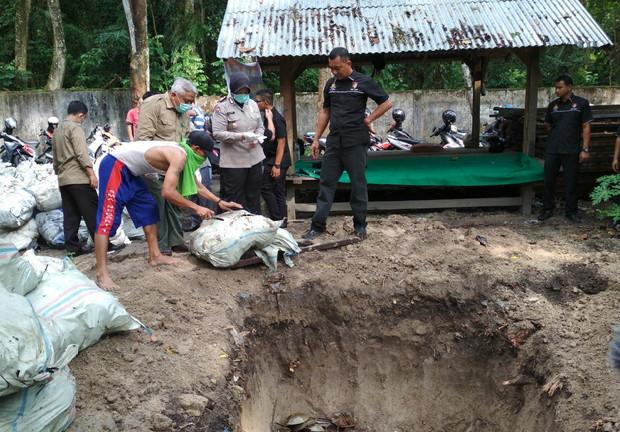 6.000 Ekor Belangkas Tangkapan Polair Polda Riau Dimusnahkan
