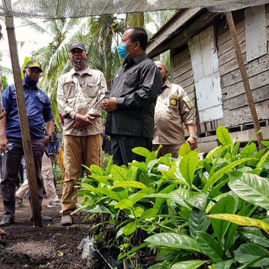 Bupati Irwan Bangun Centra Industri Kopi di Rangsang Pesisir