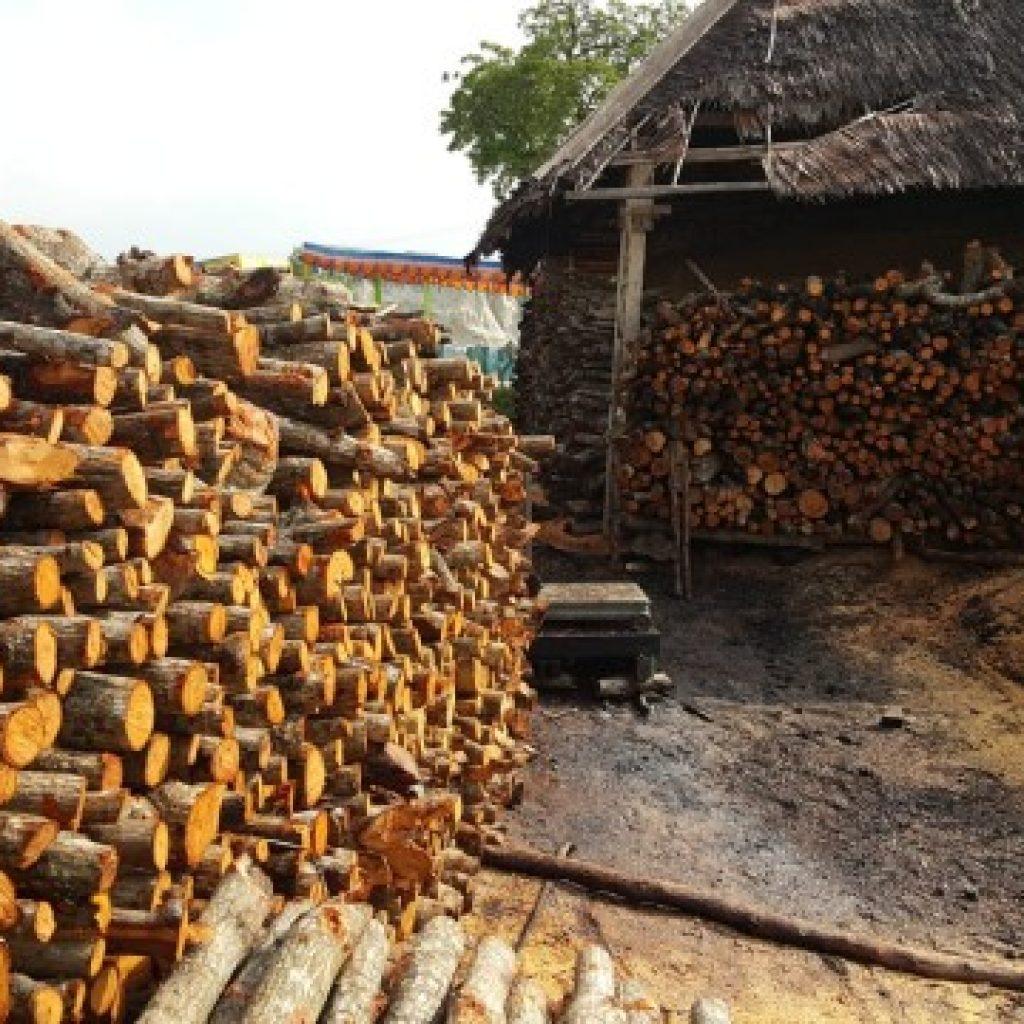8.300 Hektar HTR Kabupaten Kepulauan Meranti, 47 Panglong Arang dan 181 Dapur Memproduksi Kayu Bakau Haram