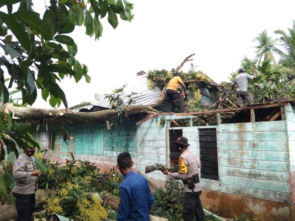 Pohon Mangga Hantam Rumah Warga