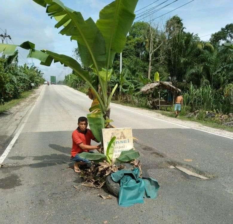 Tak Kunjung Diperbaiki, Warga Tanam Pohon Pisang di Jalan