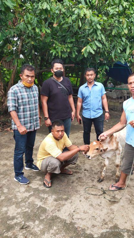 Berkat Aplikasi Horas Paten, Unit ResKrim Polsek Serbelawan Jerat Pelaku Pencuri Lembu