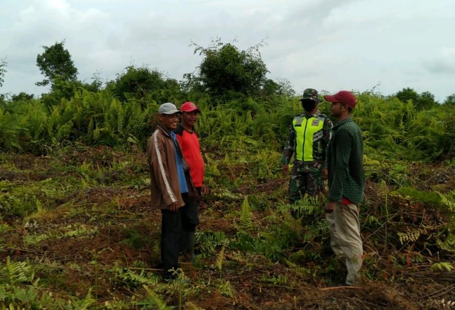 Menekan Terjadinya Kebakaran, Babinsa Laksanakan Patroli Karhutla di Desa Binaan