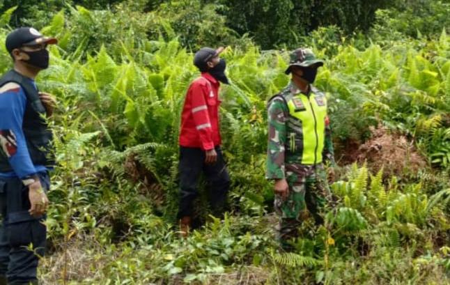 Menekan Terjadinya Karhutla, Babinsa Laksanakan Patroli Rutin di Desa Tanjung Samak