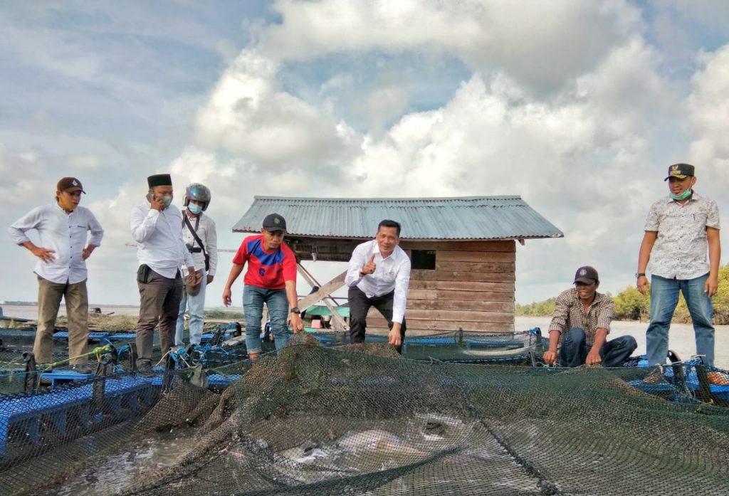 H. Adil Kungker ke Rangsang Barat, Tinjau Budidaya Kerambah Kakap Putih