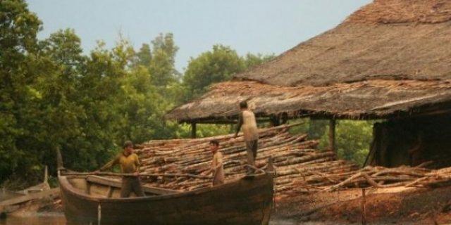 Minim Kontribusi Daerah, Panglong Arang Meranti Terancam Ditutup
