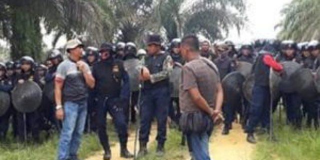 Aktivis : Kasus PT Peputra Supra Jaya Kuasai Hutan Negara, Kejari Pelawan Di Desak Eksekusi Tersangka