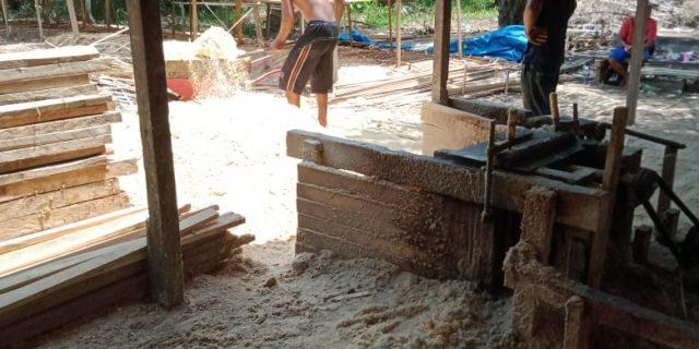 Ilegal loging di  Desa Tanah Merah, Rohil, Polda Riau diminta Turun Tangan