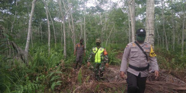 Koramil 02/Tebingtingg dan Kodim 0303/Bengkalis Laksanakan Patroli Karhutla