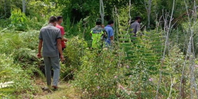 Babinsa Memaksimalkan Patroli di Wilayah Binaan Guna Cegah Terjadinya Karhutla