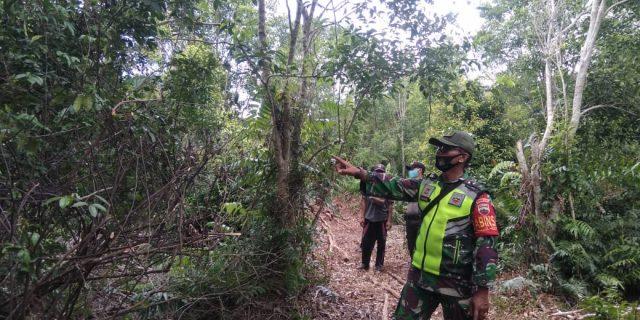 Cegah Terjadinya Kebakaran Hutan dan Lahan, Babinsa Koramil 02/Tebing Tinggi Laksanakan Patroli