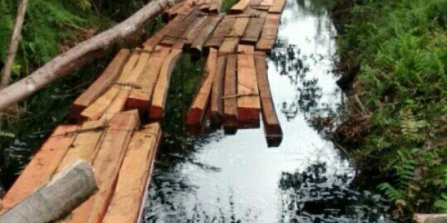 Amankan Kayu Tak Bertuan, Polres Meranti Akan Panggil Perangkat Desa