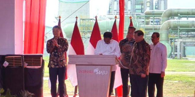 Presiden Resmikan Pabrik Viscose Rayon Senilai Rp15 Triliun di Pangkalan Kerinci